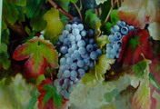 fruit oil painting sample